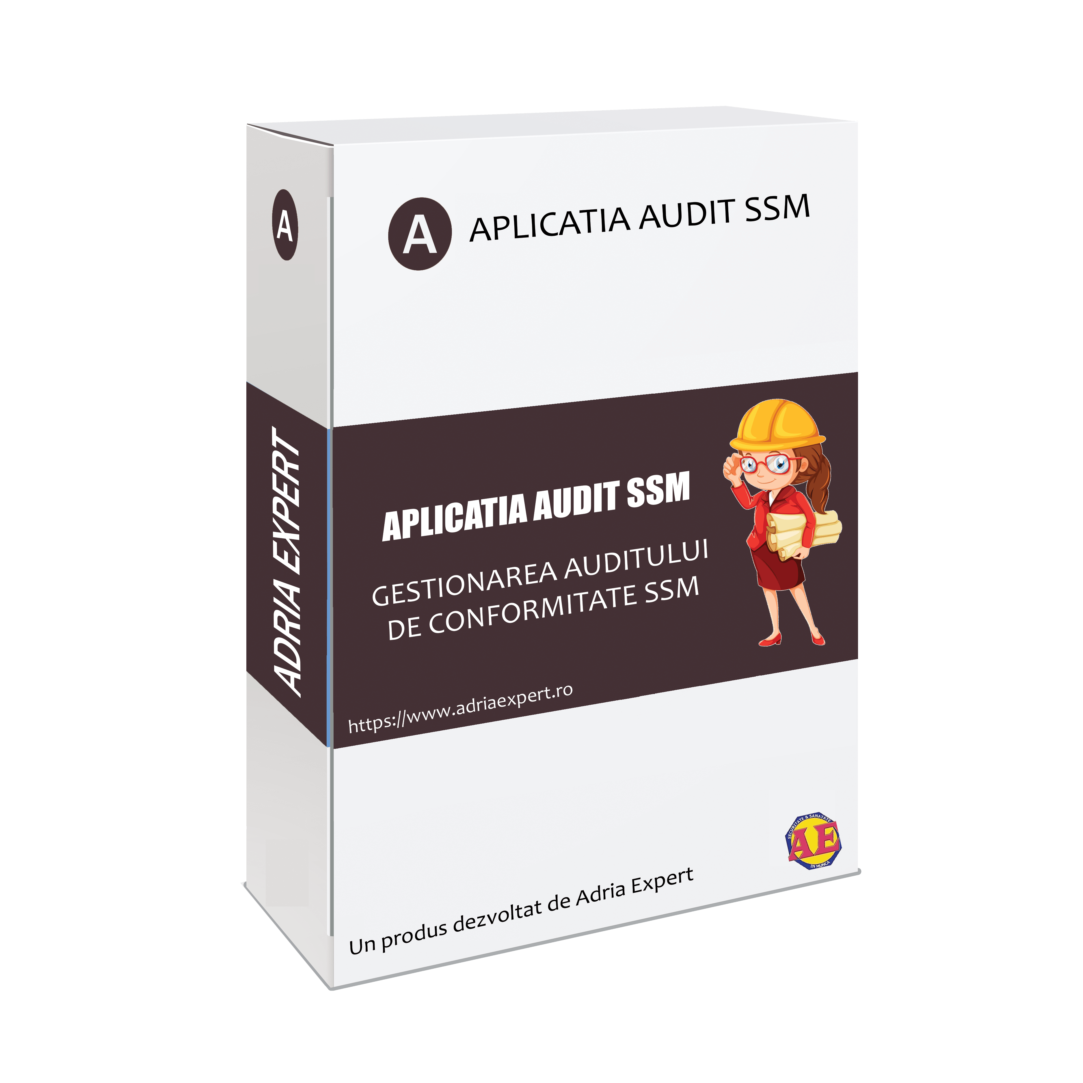 Aplicatia AUDIT SSM